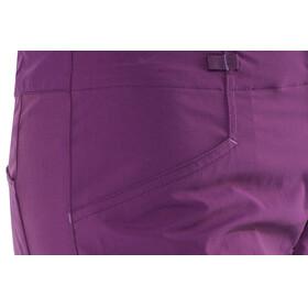 Patagonia W's RPS Rock Pants Geode Purple